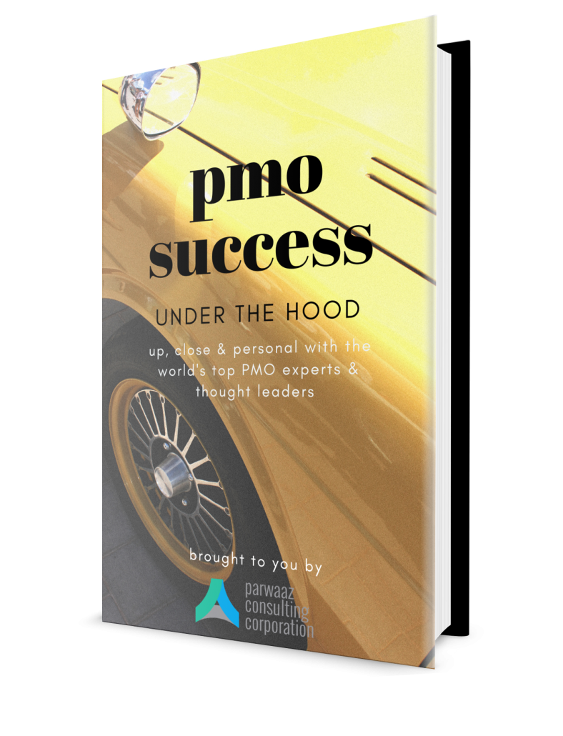 PMO Success - Under the Hood
